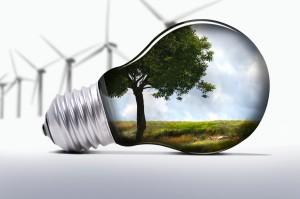 Ambiente Green Network